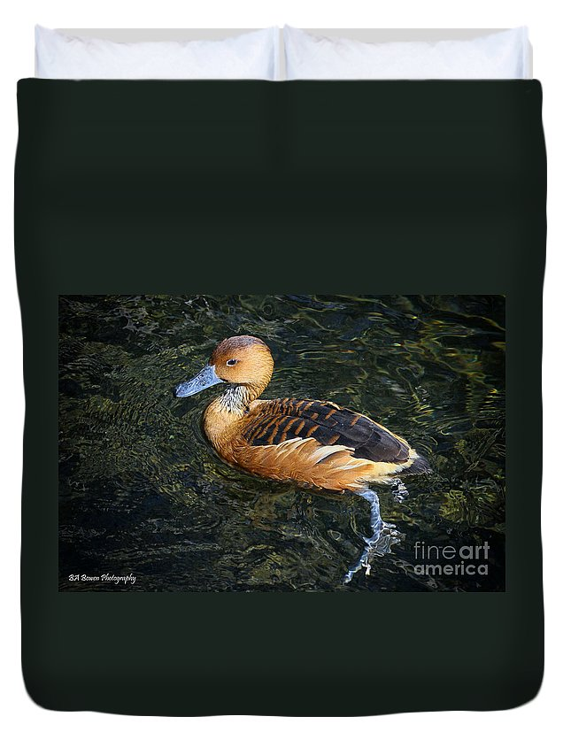 Fulvous Whistling Duck Duvet Cover featuring the photograph Fulvous Whistling Duck by Barbara Bowen