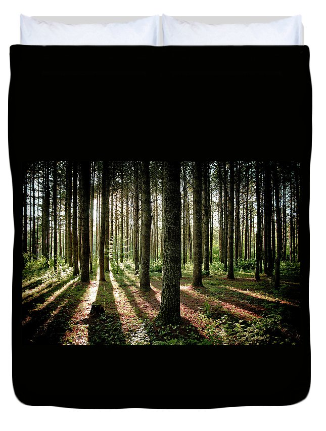 Tranquility Duvet Cover featuring the photograph Galarneau by Guillaume Seguin