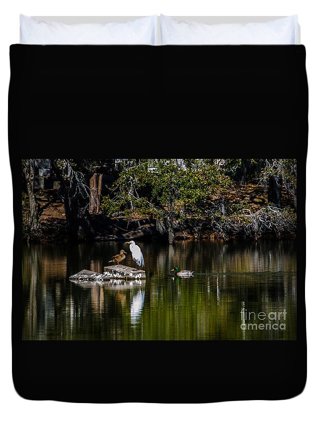 Gathering Spot Duvet Cover featuring the photograph Gathering Spot by Dale Powell