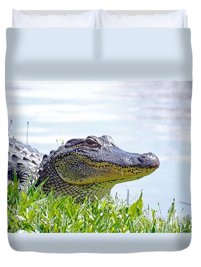 Alligator Duvet Cover featuring the photograph Gator Smile by Lizi Beard-Ward