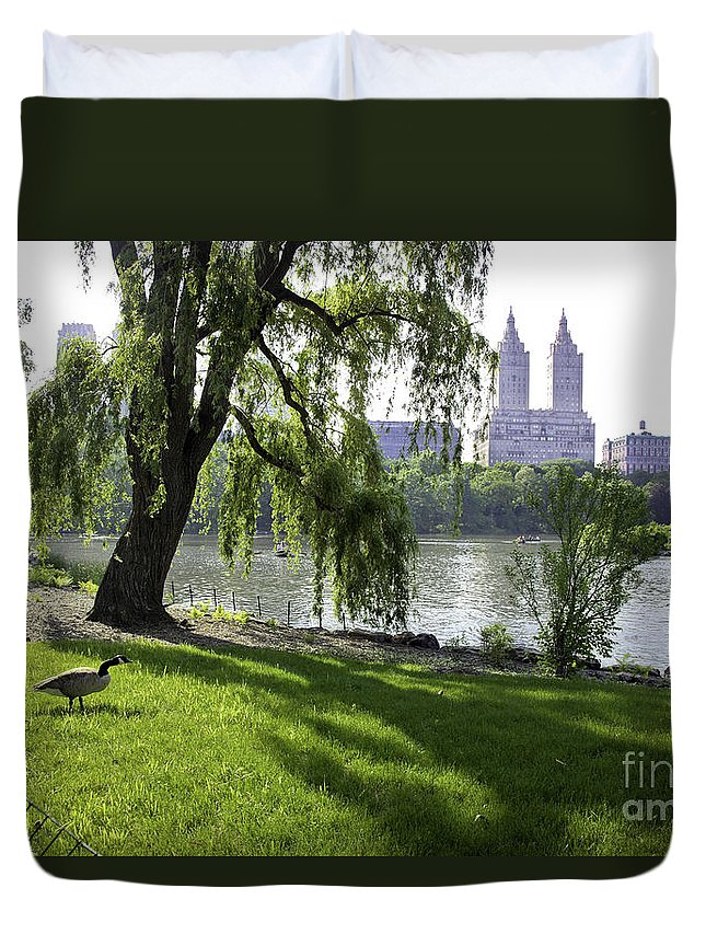 Geese Duvet Cover featuring the photograph Geese In Central Park Nyc by Madeline Ellis