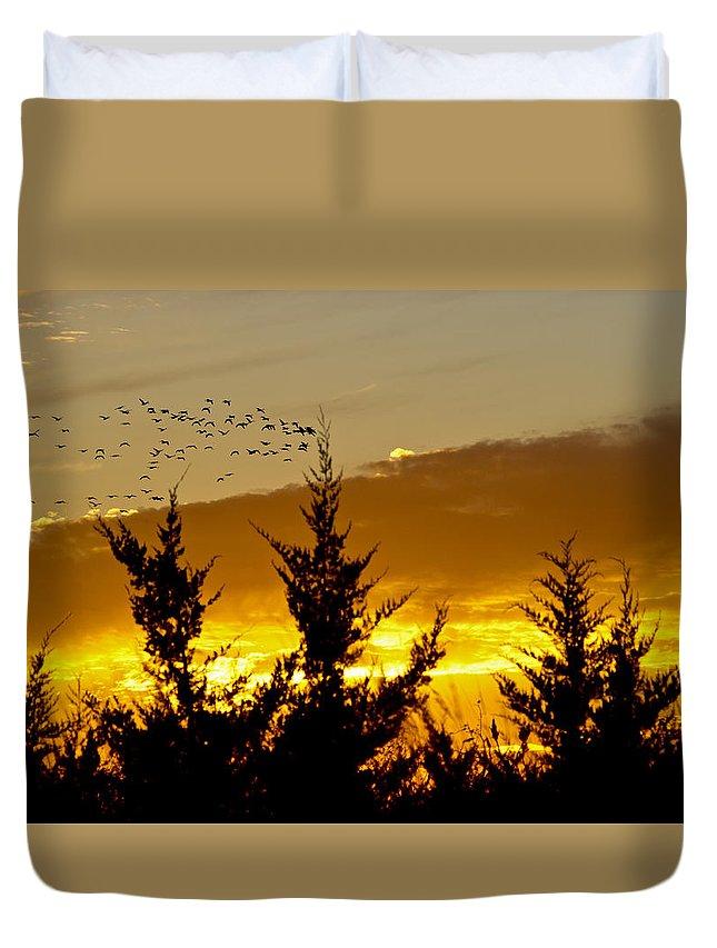 Sunset Duvet Cover featuring the photograph Geese In Golden Sunset by Shelly Gunderson