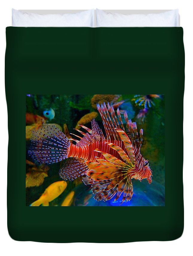 Lionfish Duvet Cover featuring the photograph Gentle Danger by Tim G Ross
