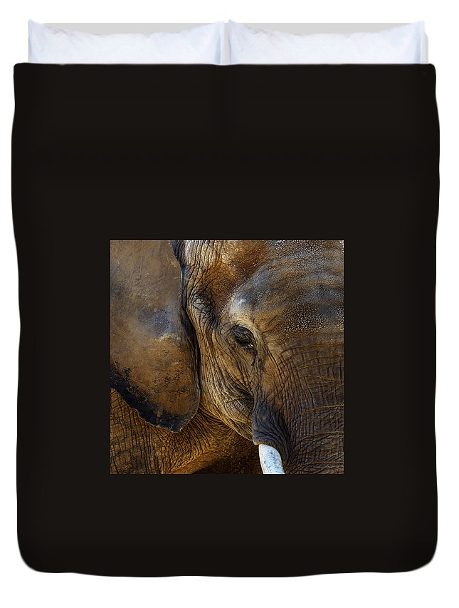 Elephant Duvet Cover featuring the photograph Gentle Giant by Mark McKinney