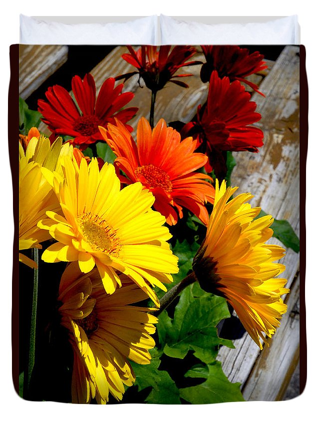 Roses Duvet Cover featuring the photograph Gerber Daisies by Jeff McJunkin
