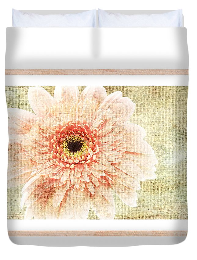 Gerber Duvet Cover featuring the photograph Gerber Daisy 1 by Andee Design