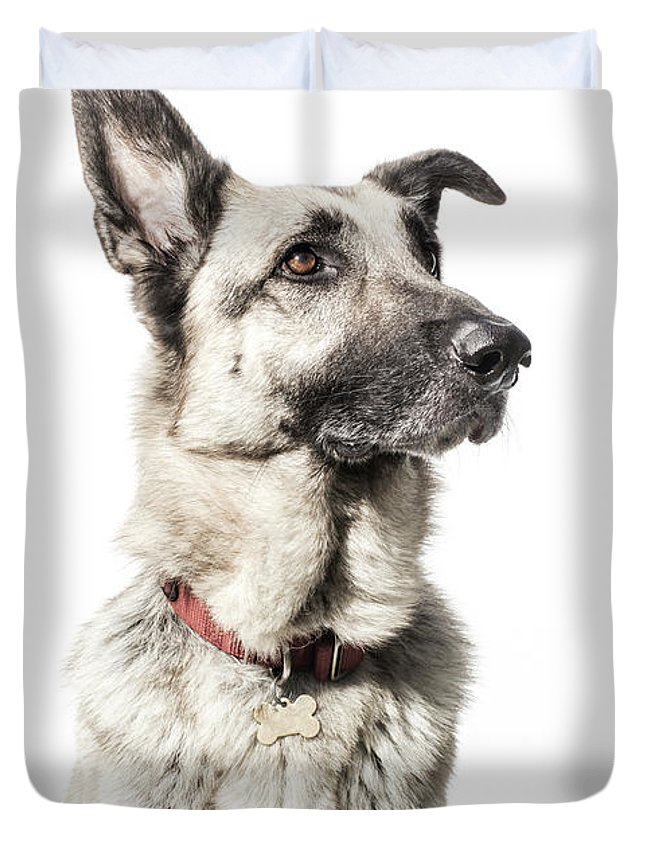 Pets Duvet Cover featuring the photograph German Shepherd - The Amanda Collection by Amandafoundation.org
