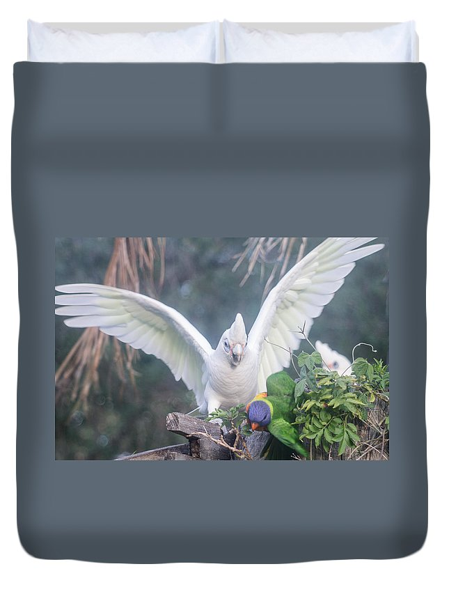Birds Duvet Cover featuring the photograph Get Off by Michael Podesta