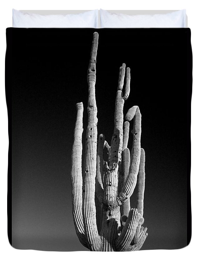 Giant Duvet Cover featuring the photograph Giant Saguaro Cactus Portrait In Black And White by James BO Insogna