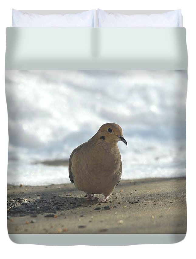 Minnesota Duvet Cover featuring the photograph Giants In The Sky by Dacia Doroff