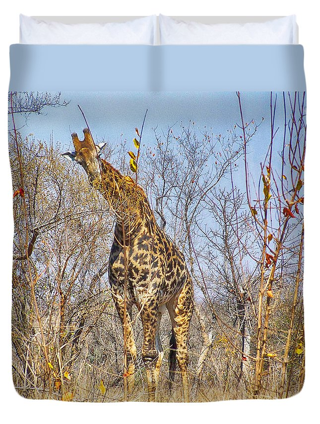 Giraffe Duvet Cover featuring the photograph Giraffe by Douglas Barnard