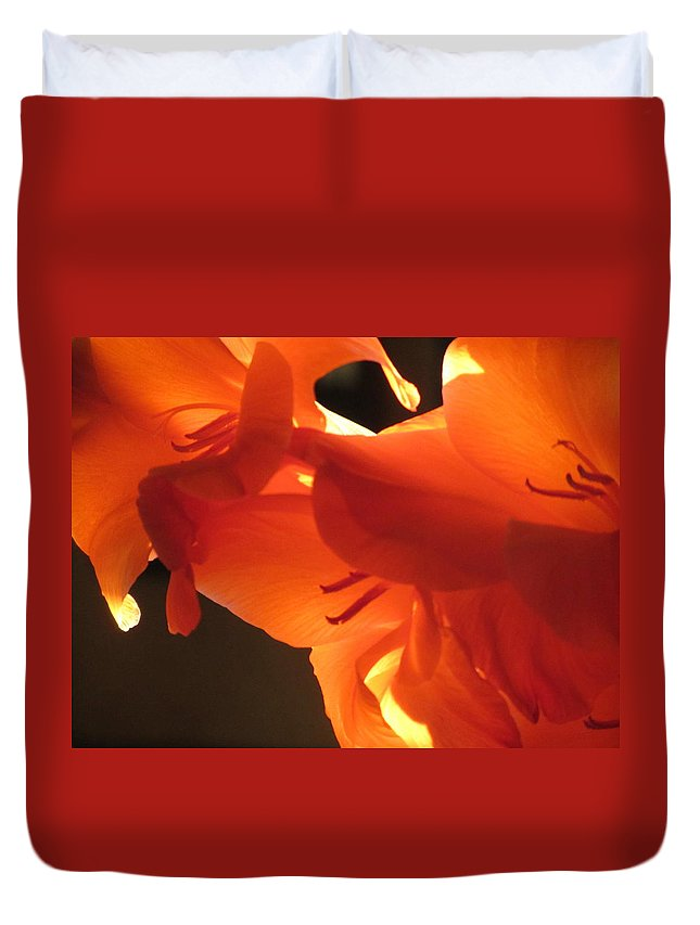 Flower Duvet Cover featuring the photograph Gladiola Close Up 3 by Anita Burgermeister