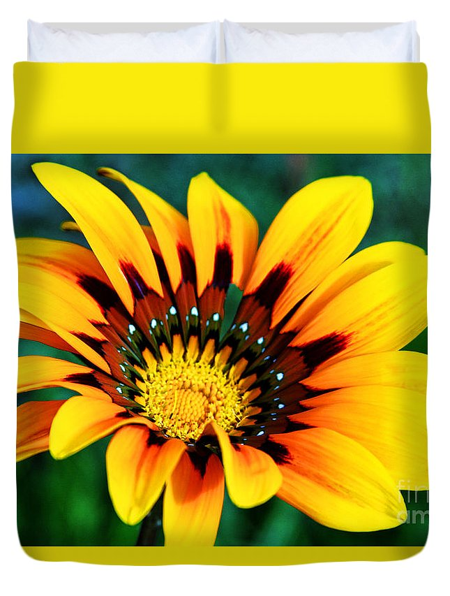 Daisy Duvet Cover featuring the photograph Glorious Day Yellow Flower By Diana Sainz by Diana Raquel Sainz