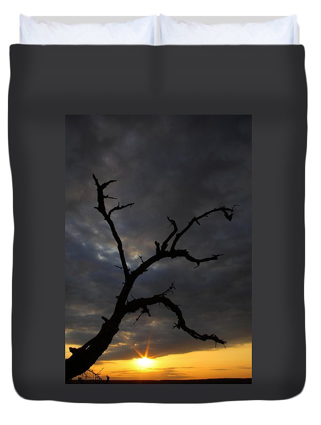 Texas Duvet Cover featuring the photograph Gnarly by Andrew McInnes