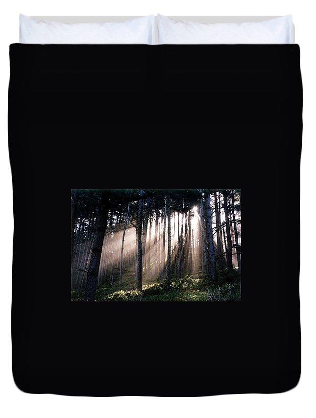 Sunbeams Duvet Cover featuring the photograph God Light by Loren McNamara