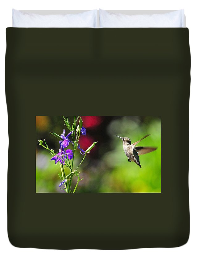 Hummers Duvet Cover featuring the photograph Going Home by Lynn Bauer