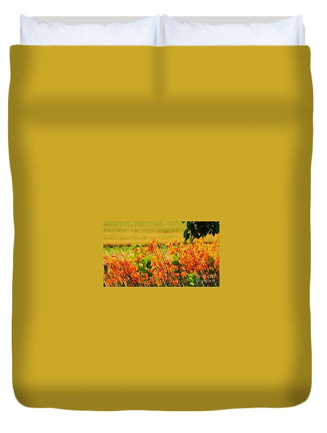 Nature Duvet Cover featuring the photograph Gold And Orange Landscape by Eric Schiabor