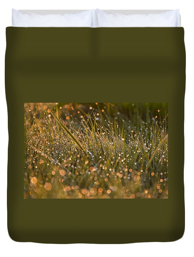 Gold Duvet Cover featuring the photograph Golden Dew Drops by Donna Doherty