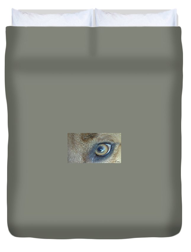 Golden Eye Of Norbu 12 18 2011 Duvet Cover featuring the photograph Golden Eye Of Norbu 12 18 2011 by Feile Case
