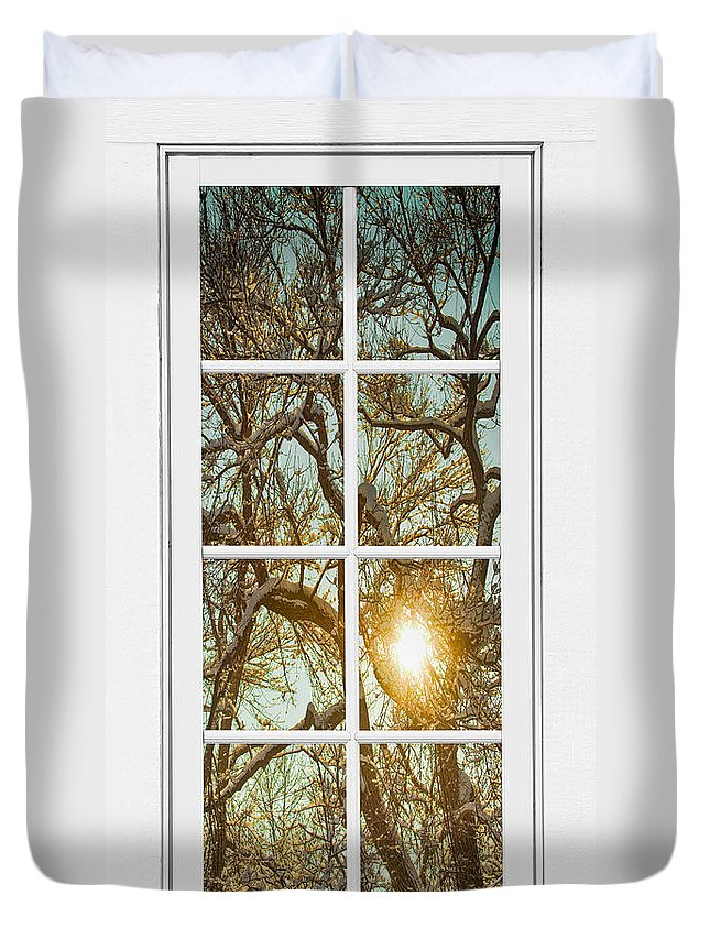 Window Duvet Cover featuring the photograph Golden Forest Branches White 8 Windowpane View by James BO Insogna