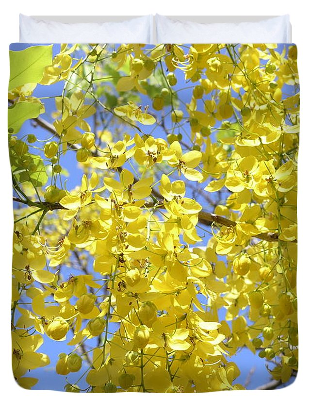 Yellow Duvet Cover featuring the photograph Golden Medallion Shower Tree by Mary Deal