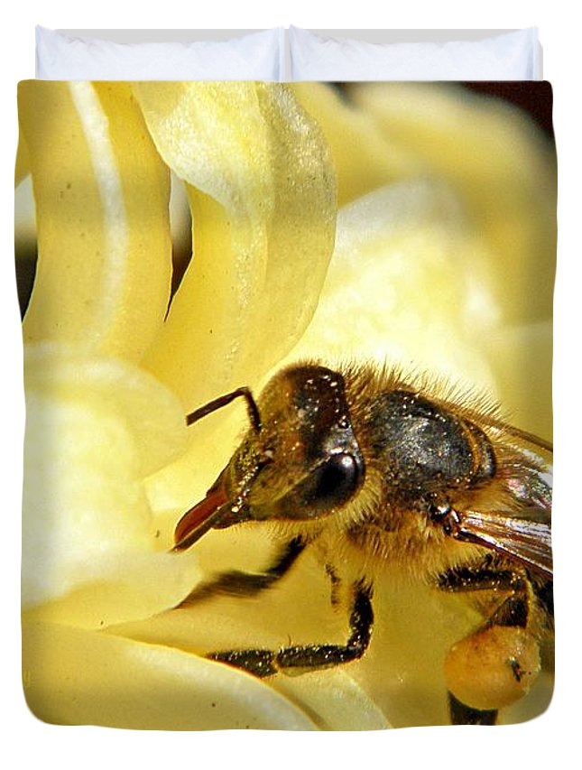 Insect Duvet Cover featuring the photograph Golden Nectar by Chris Berry