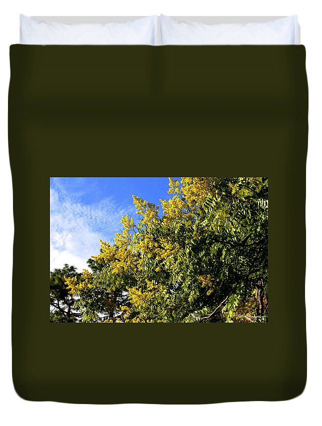 Golden Duvet Cover featuring the photograph Golden Rain Tree by Debra Forand