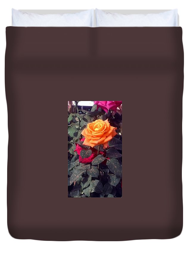 Yellow Rose Duvet Cover featuring the painting Golden Rose by Usha Shantharam