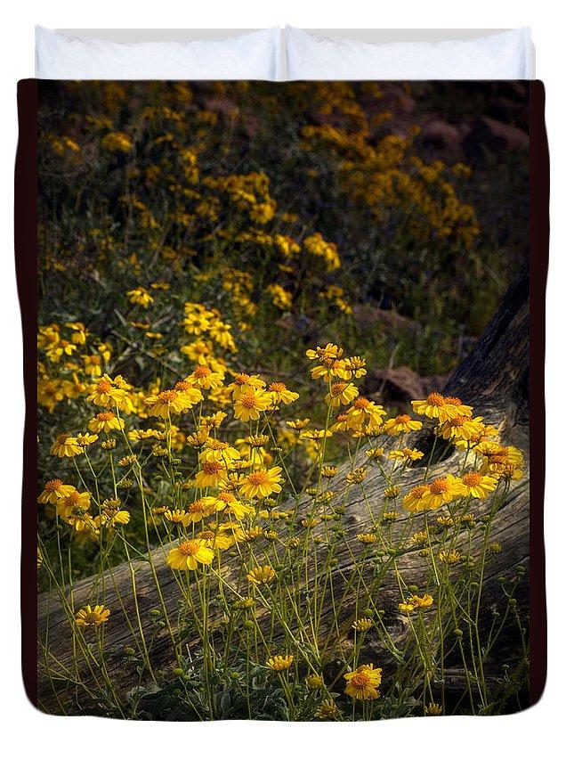 Yellow Brittlebush Duvet Cover featuring the photograph Golden Spring Flowers by Saija Lehtonen