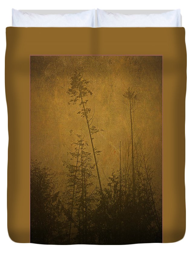 Trees Duvet Cover featuring the photograph Golden Trees In Winter by Peggy Collins