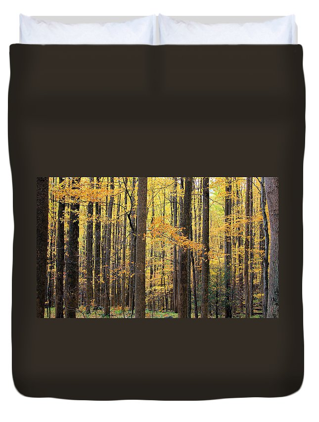 Great Smoky Mountains National Park Duvet Cover featuring the photograph Golden View by Jackie Novak
