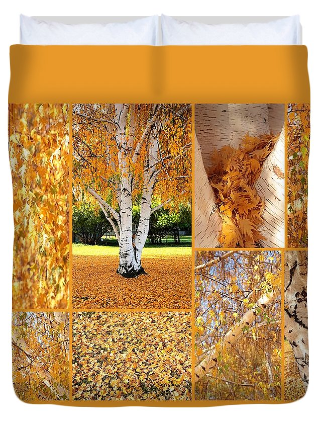 Weeping Birch Tree Duvet Cover featuring the photograph Golden Weeping Birch Tree Collage by Carol Groenen