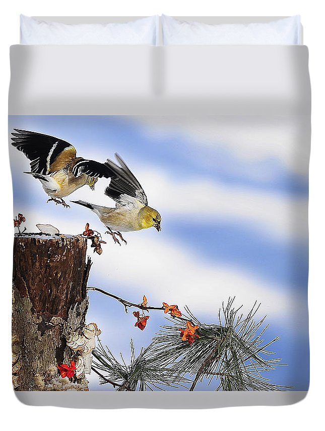 Goldfinches Duvet Cover featuring the photograph Goldfiches Flying Over Lichen Stump by Randall Branham