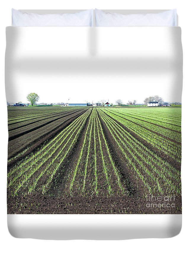 Farm Duvet Cover featuring the photograph Good Earth by Ann Horn