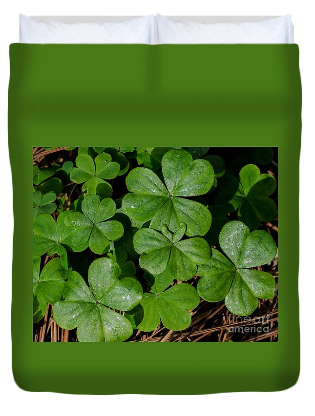 Leaf Duvet Cover featuring the photograph Good Luck 2 by Andrea Anderegg