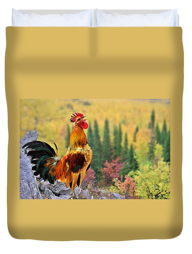 Chickens Duvet Cover featuring the photograph Good Morning America by Christine Till