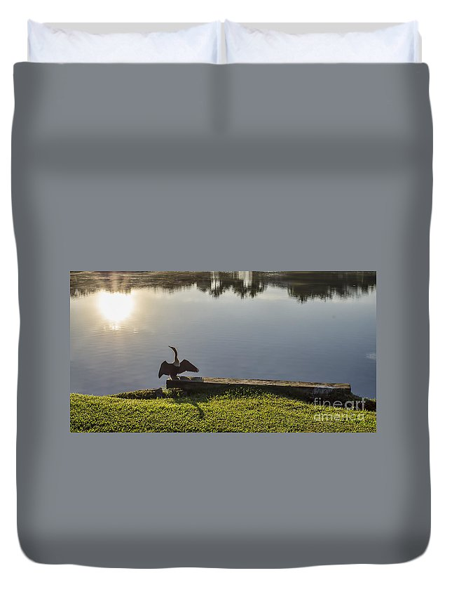 Bird Duvet Cover featuring the photograph Good Morning Sunshine by Judy Wolinsky