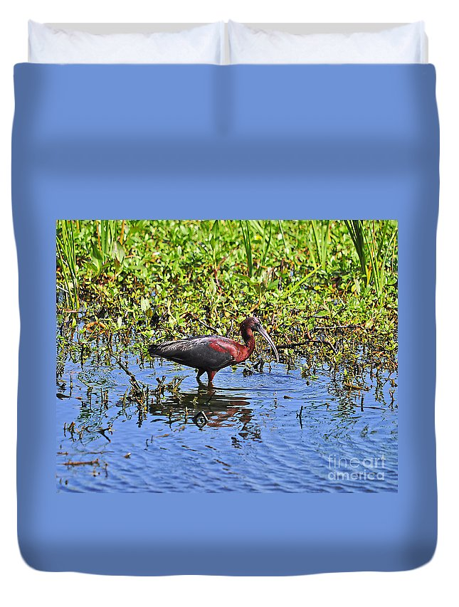 Ibis Duvet Cover featuring the photograph Gorgeous Glossy by Al Powell Photography USA
