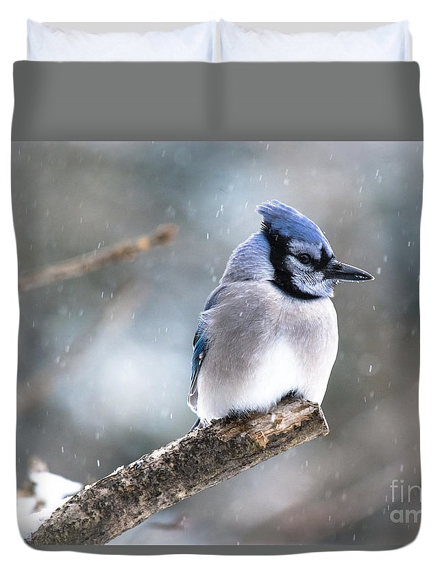 Duvet Cover featuring the photograph Gorgeous Pose by Cheryl Baxter