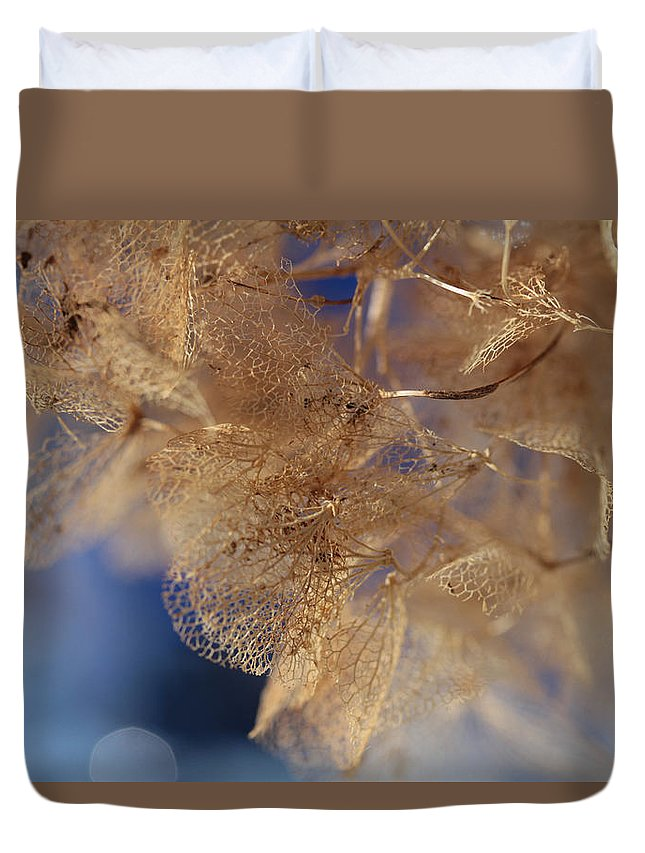 Hydrangea Duvet Cover featuring the photograph Gossamer by Connie Handscomb