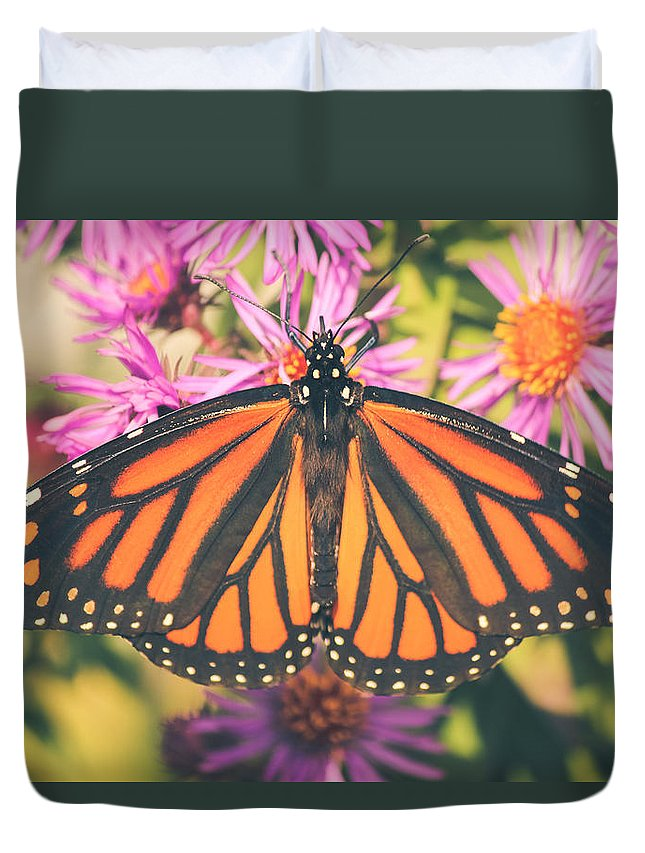 Monarch Duvet Cover featuring the photograph Grace And Beauty by Viviana Nadowski