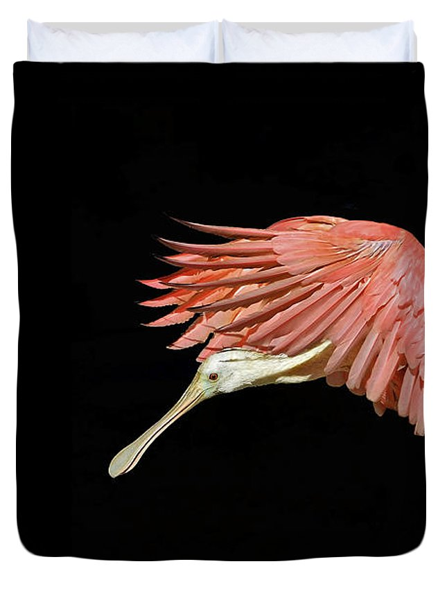 Roseate Spoonbill Duvet Cover featuring the photograph Grace by Stuart Harrison