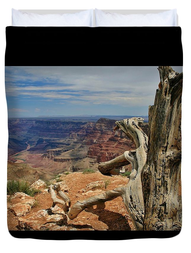 Grand Canyon Duvet Cover featuring the photograph Grand Canyon And Dead Tree 1 by Mo Barton