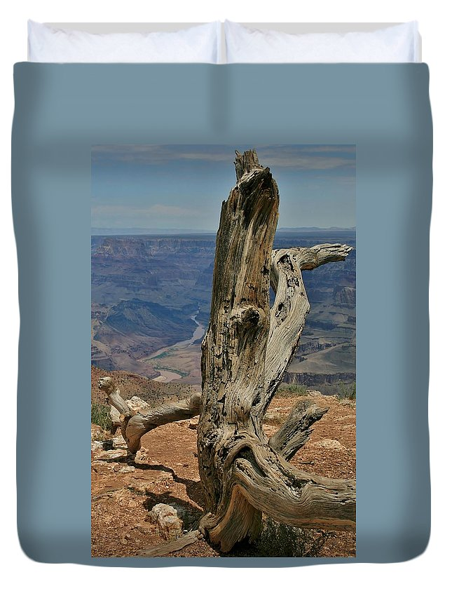 Grand Canyon Duvet Cover featuring the photograph Grand Canyon And Dead Tree 2 by Mo Barton