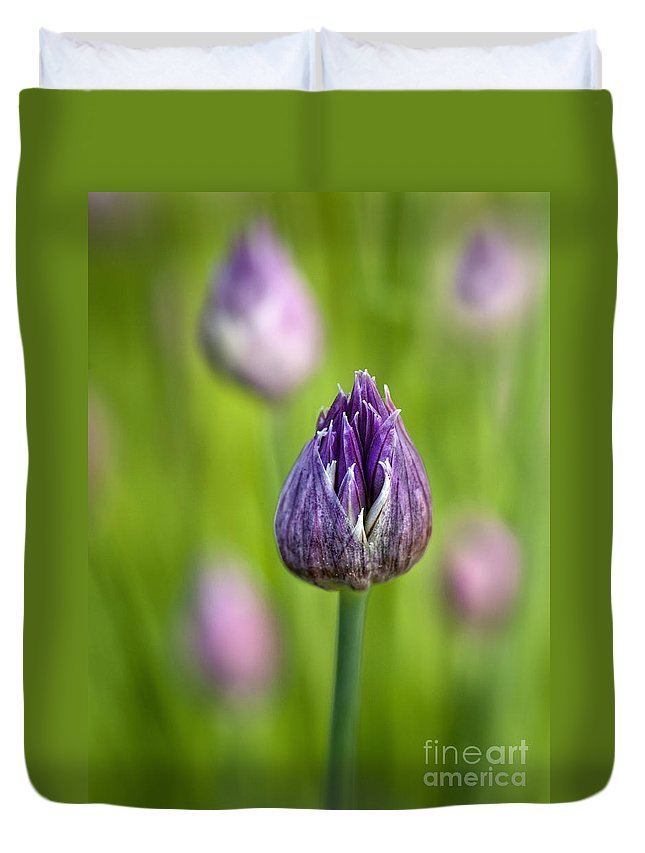Flowers Duvet Cover featuring the photograph Grand Opening by Claudia Kuhn