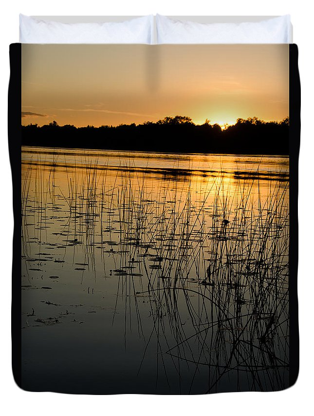 Ice Duvet Cover featuring the photograph Grass Reflection 2 by Cassie Marie Photography