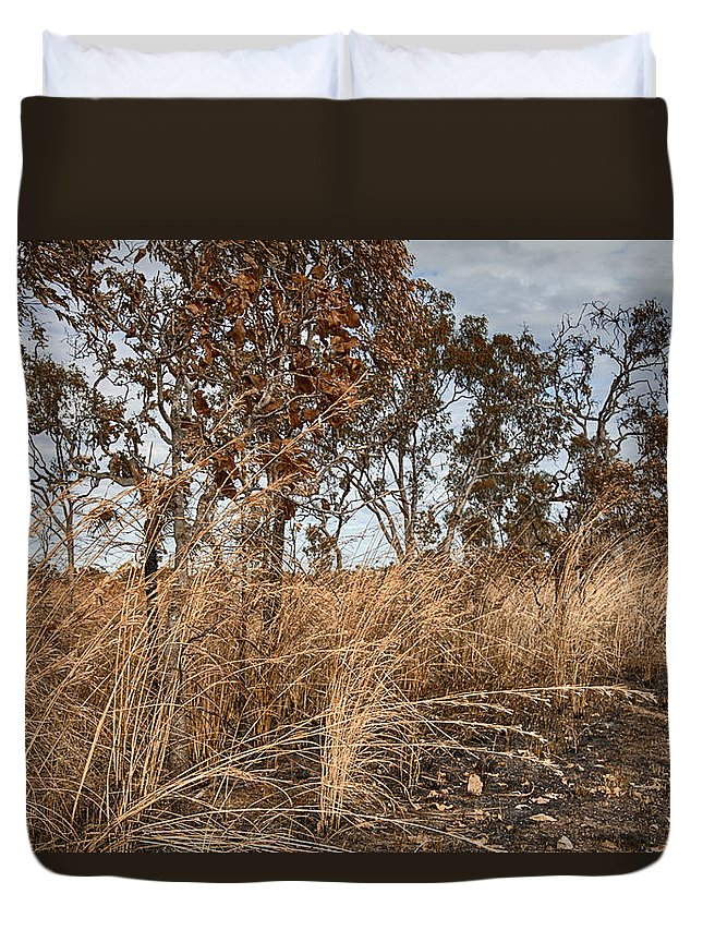 Grassroots Duvet Cover featuring the photograph Grassroots by Douglas Barnard