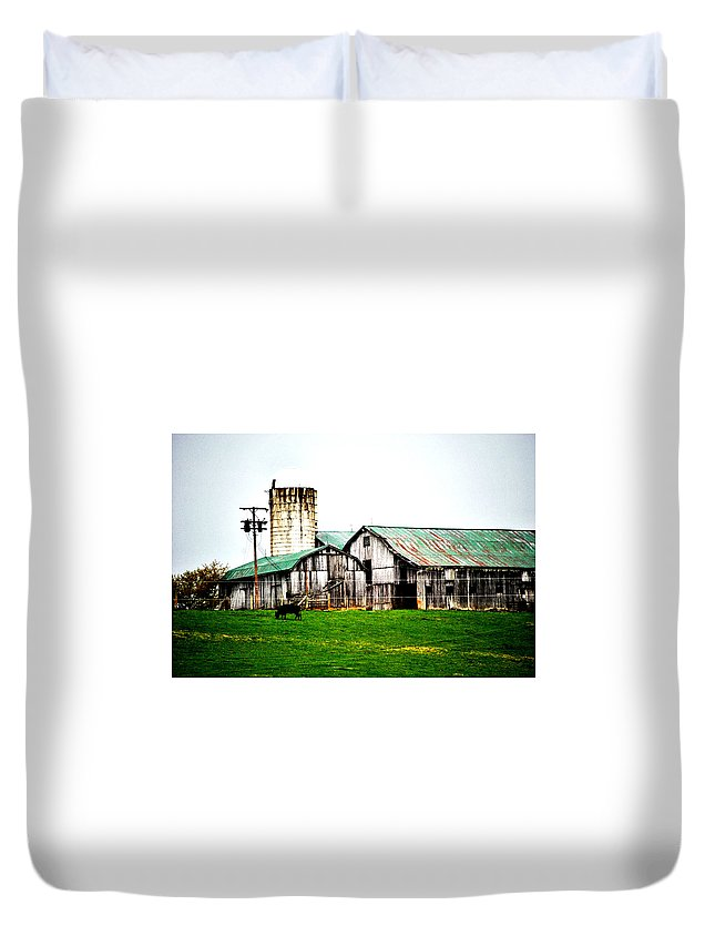 Farm Duvet Cover featuring the photograph Grazing by Chastity Hoff