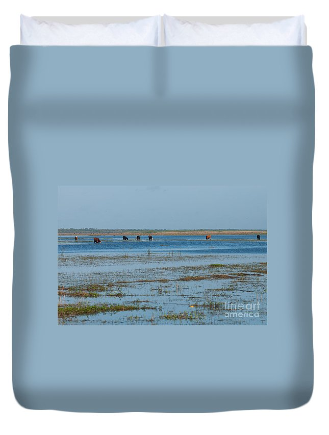 Cattle Duvet Cover featuring the photograph Grazing The River by Photos By Cassandra