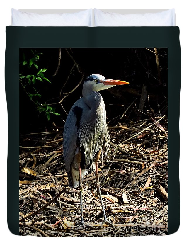 Great Blue Heron Duvet Cover featuring the photograph Great Blue Heron by Craig Corwin